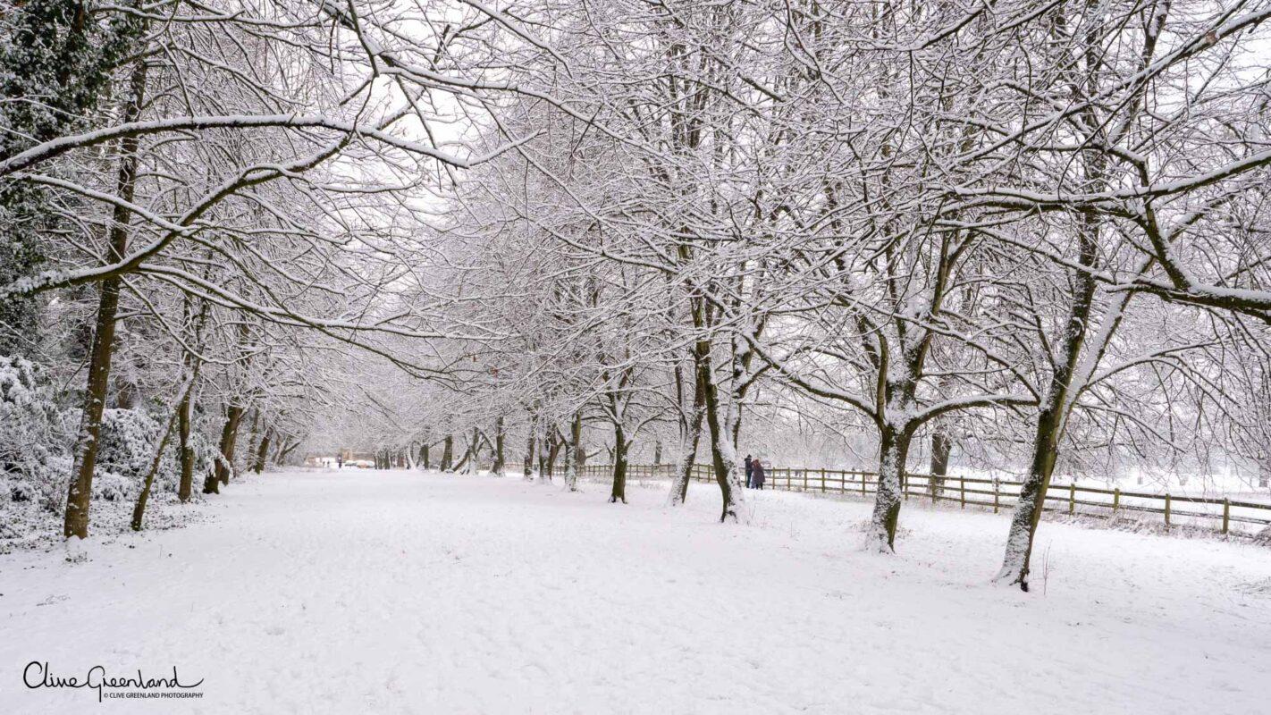 Permalink to:Corsham – Lockdown Snow